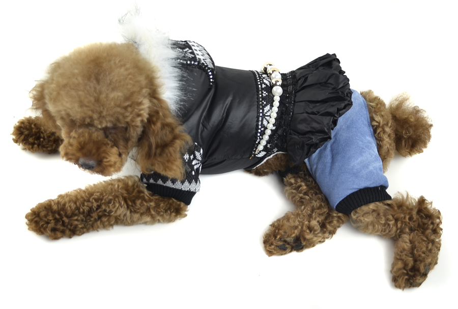 Classic Waterproof Winter Dog clothes Snow and necklace ...