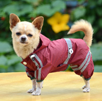 Double-layer mesh water-proof Small Pet Dog Raincoat Purple