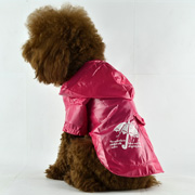 graceful fashion dog raincoat