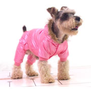 trendy water-proof & cold-proof four-legged dog coat