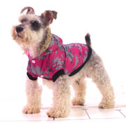 fashion pattern dog coat--special offer