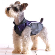 leisure buttonless dog coat