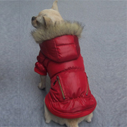 Deluxe dog Windbreaker - red