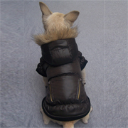 Deluxe dog Windbreaker - coffee
