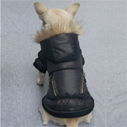 Deluxe dog Windbreaker - black