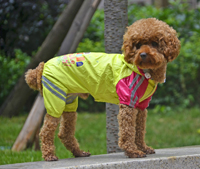 Double-layer mesh Puppy four-legged Printing water-proof dog raincoat Yellow