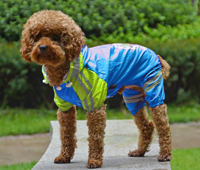 Double-layer mesh Puppy four-legged Printing water-proof dog raincoat Blue