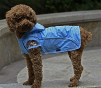 Double-layer mesh water-proof Small Pet Dog Raincoat Blue