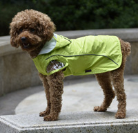 Double-layer mesh water-proof Small Pet Dog Raincoat Green