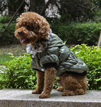 Classic zipper design Winter Dog Coat Puppy Clothes Amry Green