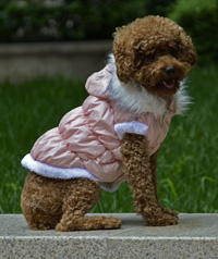 Fahion Plain Winter Dog Coat Puppy Clothing with Detachable Hat Pink