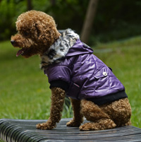 Classic Diamond Stitch Winter Dog Clothes Puppy Coat Purple
