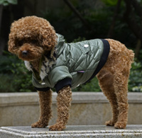 Classic Diamond Stitch Winter Dog Clothes Puppy Coat Amry Green