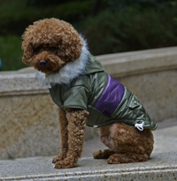 Contrast Color Fish Bone pattern Adjustable button Winter Dog Clothing Pet Coat Amry Green