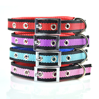 Stripe Pattern Dog Collars Pin Buckles Soft Foam Lining