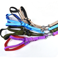 Blank Dog Harnesses and Dog Leashes Set Soft Foam Lining