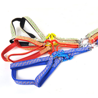 Waves Pattern Dog Harnesses and Dog Leashes Set Soft Foam Lining
