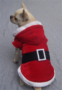 Christmas Dog Coat-red